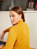 Funnel neck jumper Absinthe yellow Icone
